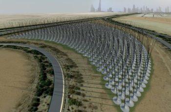 Bosque de energía