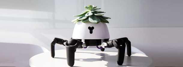 maceta robot que sigue al sol