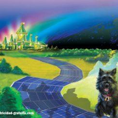 Y si en vez de un camino amarillo en el Mago de Oz, hubiera sido un camino de paneles solares